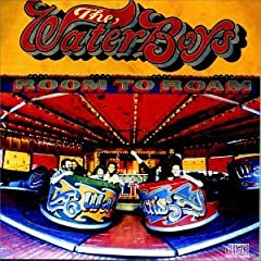 The Waterboys/The Waterboys (2008)
