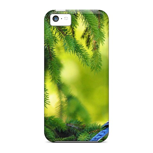 [Gro5892Pzrd]Premium Phone Case For Iphone 5C/ Blue Jay In The Pine Tree Tpu Case Cover