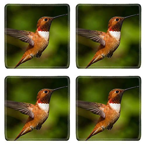 MSD Natural Rubber Square Coasters 4 Pack Per Order Humming bird flying against natural green background IMAGE 25887835