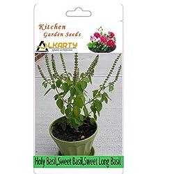 alkarty Holy Basil,Sweet Basil,Sweet Long Basil Seeds pack of 50+ each