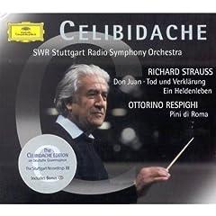 Strauss;Don Juan/Tod Und Verkl