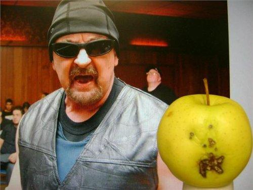 Bob Arian autographed 8x10 Photo (Wrestling End