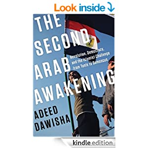 arab awakening and the revolution in Throughout the arab world, we are witnessing nothing less than the awakening of several phenomena that are critical for stable statehood.