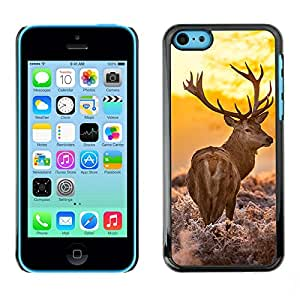 Omega Covers - Snap on Hard Back Case Cover Shell FOR Apple iPhone 5C - Majestic Stag Deer