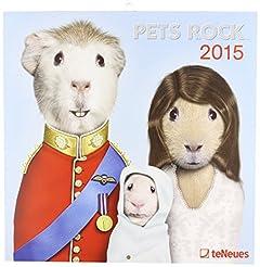 2015 Pets Rock Calendar