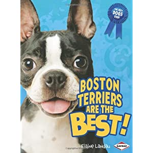 Boston Terriers Are the Best! (Best Dogs Ever) Elaine Landau