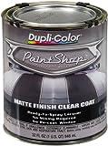 Paint Shop Matte Finish Clear