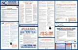 2015 North Carolina Labor Law Poster (Space Saver-1 All-On-One State and Federal) (North Carolina State & Federal Labor Law)