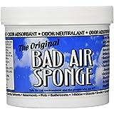 Bad Air Sponge, 1-5lb Container