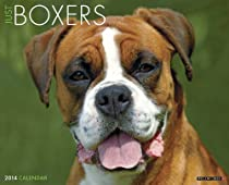 Just Boxers 2014 Wall Calendar