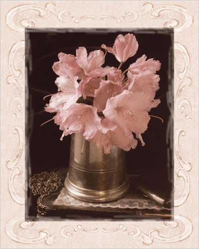 Pink Flowers Fresh Cuts II Art Print Poster by Richard Sutton