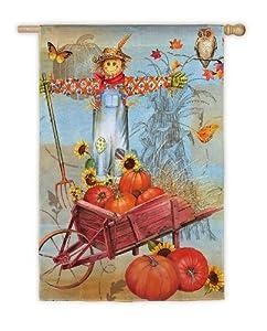 "Harvest Scarecrow and Pumpkins Decorative Garden Flag 18"" x 12.5"""