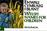 Enwau Cymraeg I Blant / Welsh Names for Children (Welsh and English Edition) (0862436427) by Gruffudd, Heini