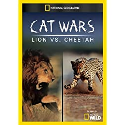 Cat Wars: Lion vs. Cheetah
