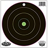 Birchwood Casey Dirty Bird Multi-color 12-Inch Bull's-Eye Target, 10 Sheet Pack