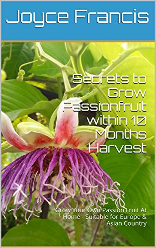 secrets-to-grow-passionfruit-within-10-months-harvest-grow-your-own-passion-fruit-at-home-suitable-f