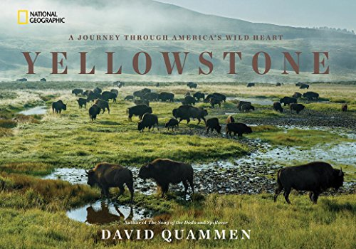 Yellowstone-A-Journey-Through-Americas-Wild-Heart