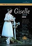 echange, troc Adam : Giselle