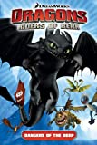 DreamWorks Dragons: Riders of Berk - Volume 2: Dangers of the Deep (How to Train Your Dragon TV)