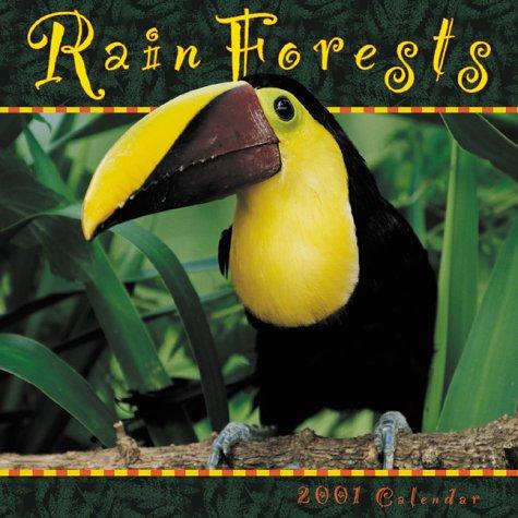 Rain Forests 2001 Calendar