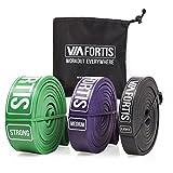 VIA FORTIS Premium Fitnessbänder - Klimmzug-Band für CrossFit Calisthenics oder Freeletics Workout - Widerstandsband mit praktischem Transportbeutel - verschiedene Größen