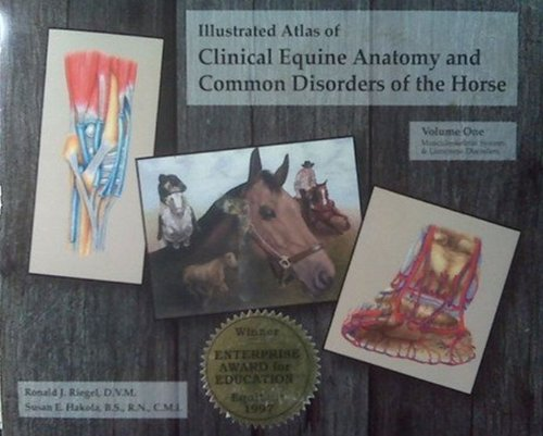 Illustrated Atlas of Clinical Equine Anatomy and Common...