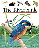The Riverbank (First Discovery Series)