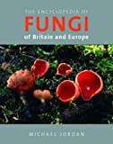 Encyclopedia of Fungi of Britain and Europe (0711223793) by Jordan, Michael