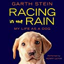 Racing in the Rain Audiobook by Garth Stein Narrated by Henry Leyva