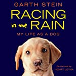 Racing in the Rain | Garth Stein