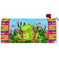 Happy Frog - Magnetic Mailbox Cover Wrap