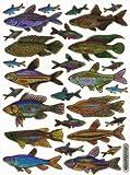 Fische, Aquarium, Aufkleber, Sticker Basteln Info Sticker