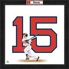 Dustin Pedroia Boston Red Sox 20X20 Uniframe Photo by Photo File