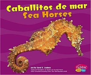 Caballitos de mar / Sea Horses (Bajo Las Olas/Under the