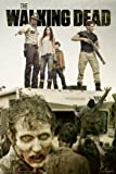 The Walking Dead Poster Season 2 (61cm x 91,5cm) + a free surprise poster!