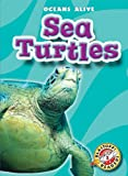 Sea Turtles (Paperback) (Blastoff! Readers: Oceans Alive)