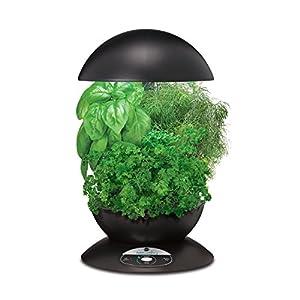 Miracle-Gro AeroGarden 3-Pod Indoor Garden with Gourmet Herb Seed Kit, Black