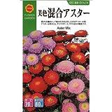 アスター (美色混合) (春、秋まき) (828)