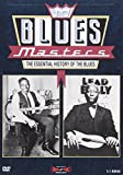 Blues Masters - The Essential History of the Blues