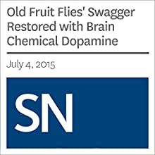 Old Fruit Flies' Swagger Restored with Brain Chemical Dopamine Other by Laura Sanders Narrated by Mark Moran
