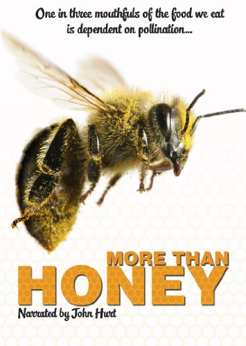 More Than Honey [DVD] [UK Import]