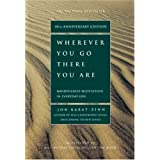 Wherever You Go, There You Are ~ Jon Kabat-Zinn