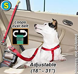Seat Belt Tethers - Small - Pink - Tether your pet in the car