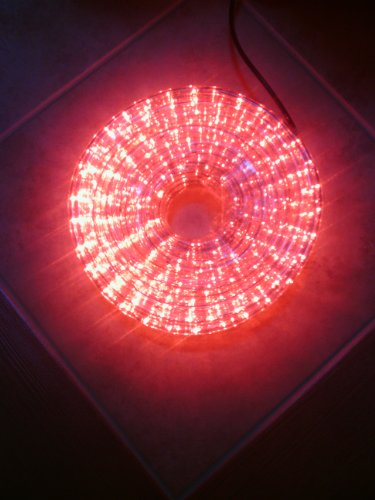 Red Led Rope Lights - 12 Volt Dc 7/16 Inch Width - 82 Feet (25 Meters)