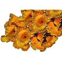 Vrct Yellow Flower String Light (Multicolor)
