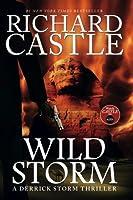 Wild Storm (a Derrick Storm Novel) (Castle) (Derrick Storm 5)