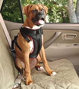 Solvit-Car Safety Harnesses