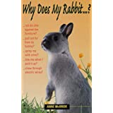 Why Does My Rabbit...?by Anne McBride