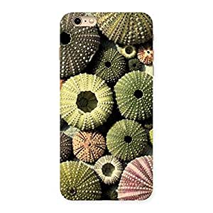 Special Sea Shell Umbrella Back Case Cover for iPhone 6 Plus 6S Plus