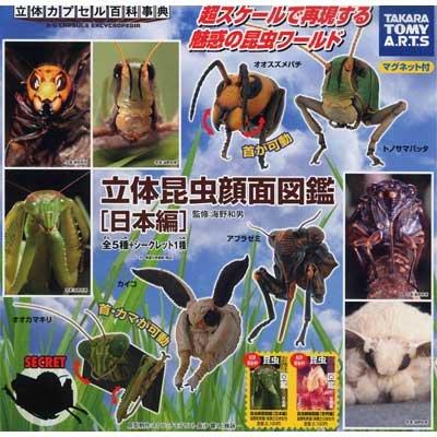 カプセル 立体カプセル百科事典 立体昆虫顔面図鑑 [日本編] シークレット1種入り全6種セット